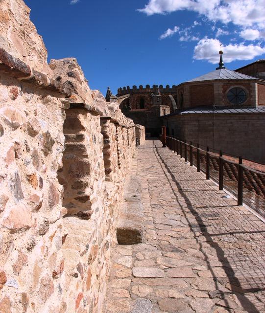 Ávila Wall2