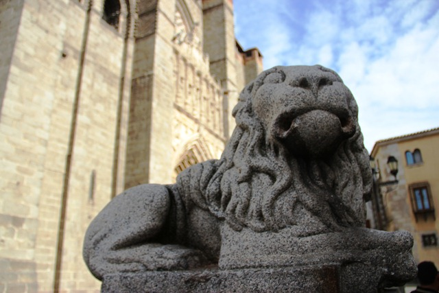 Ávila Cathedral Lion