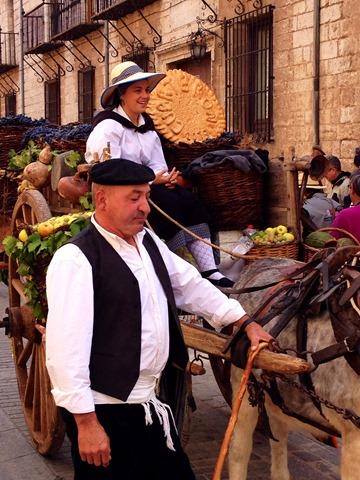 Fiesta Vendimia Toro