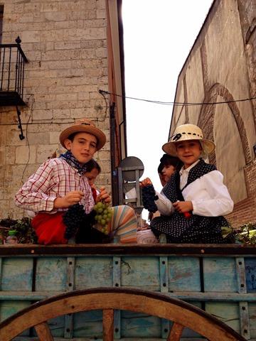 Children Fiesta Vendimia Toro